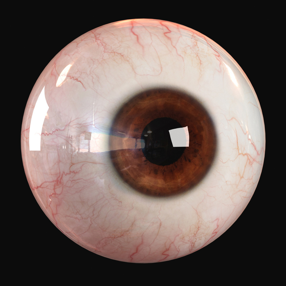 3d human eye render, brown eye color