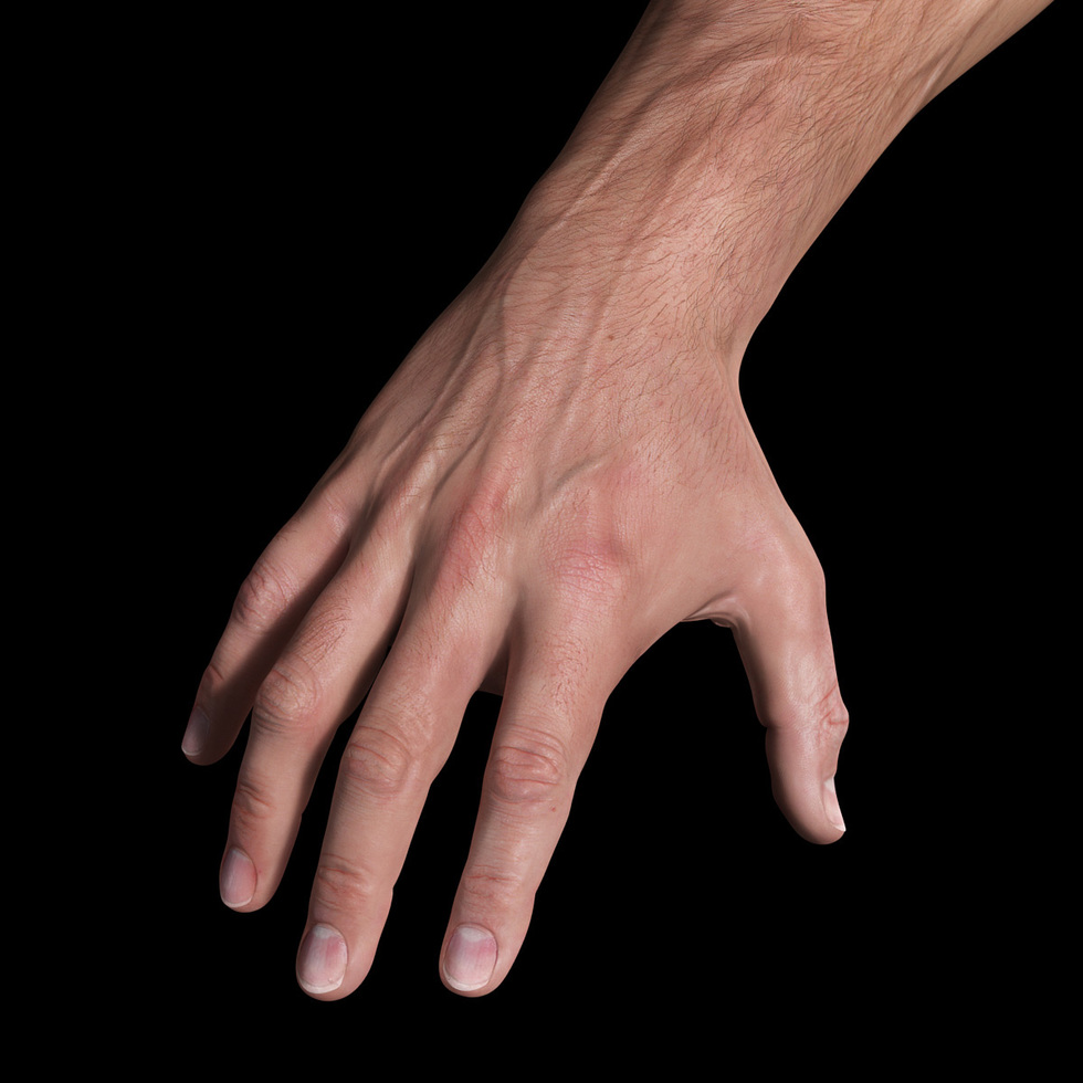 3d male hand sss render