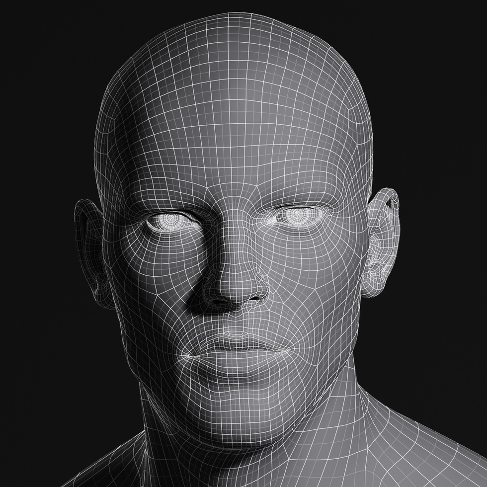 3d male head wireframe