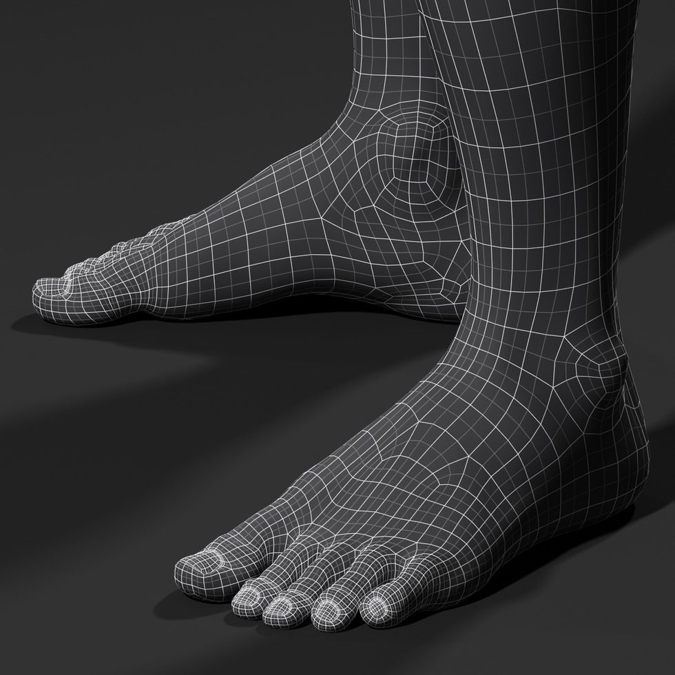 3d foot wireframe