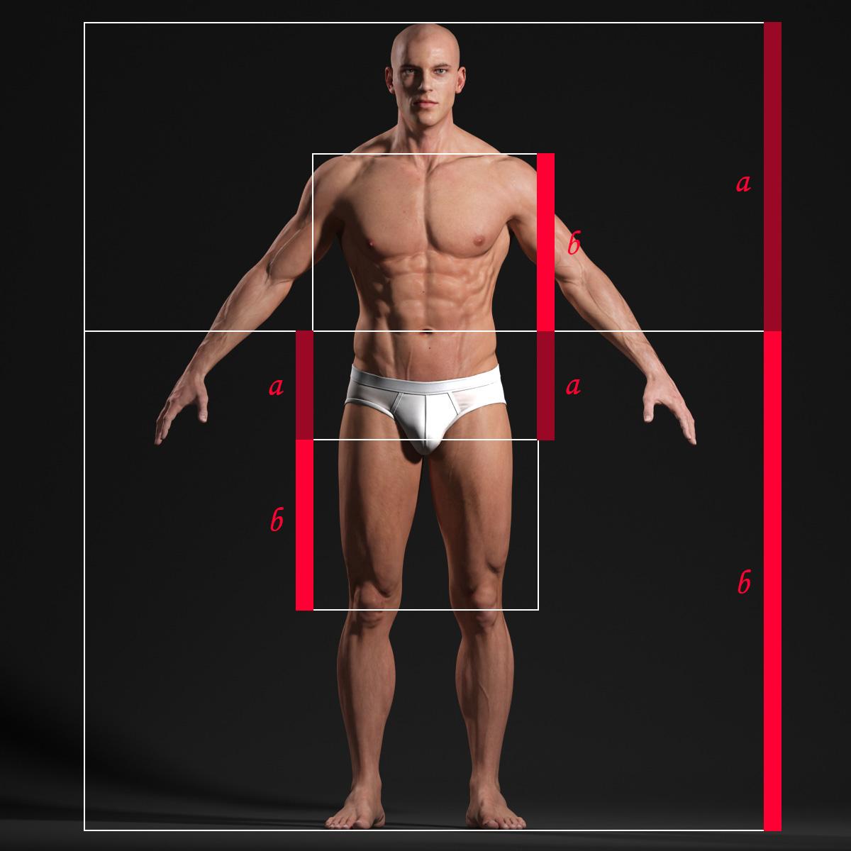 Male Body - Anatomy Study | Andor Kollar - Character Artist
