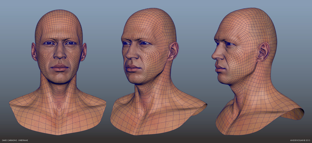 Young David Carradine 3d Maya wireframe