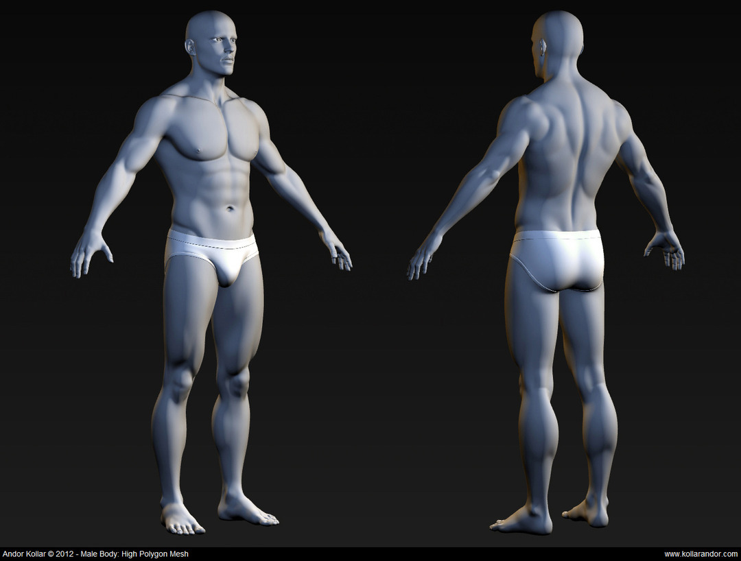 Male body high polygon mesh in Maya