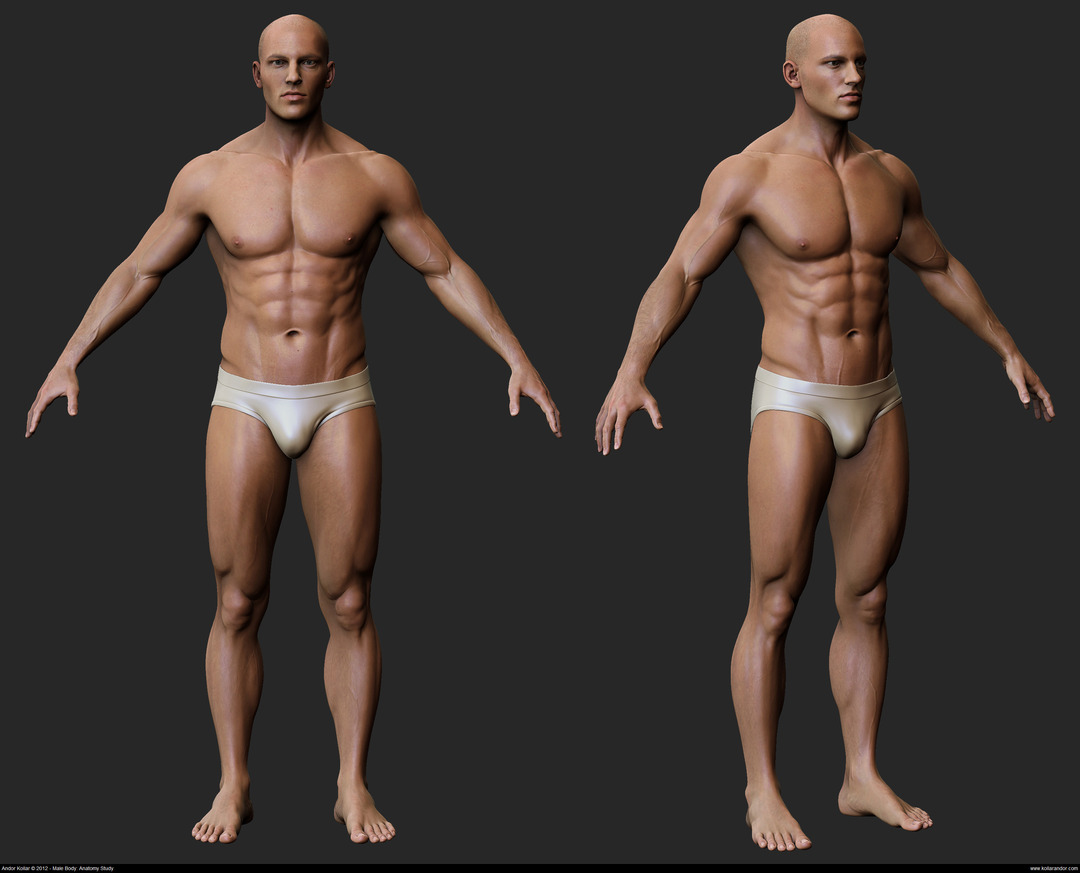 Andor Kollar Realistic Male Body in ZBrush