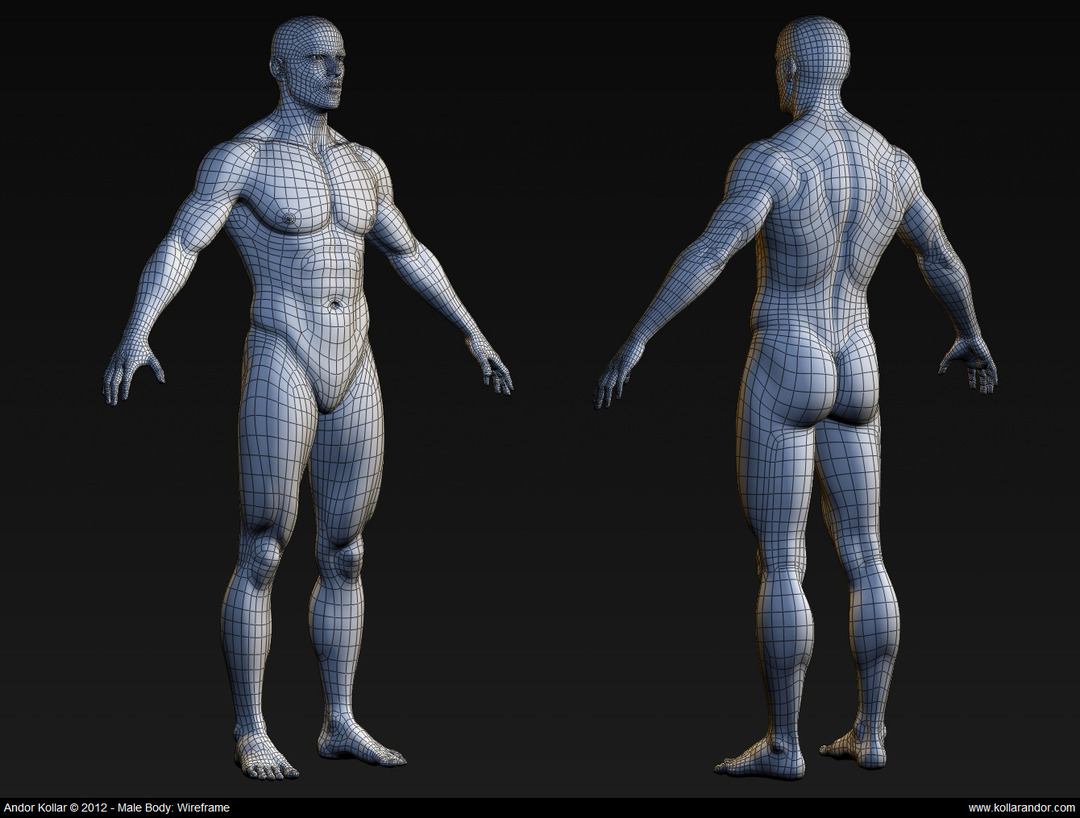 Male body high polygon mesh wireframe in Maya