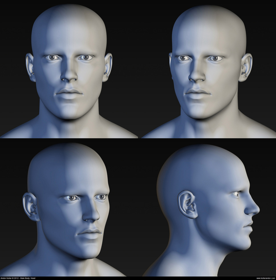 Male head high polygon mesh in Maya