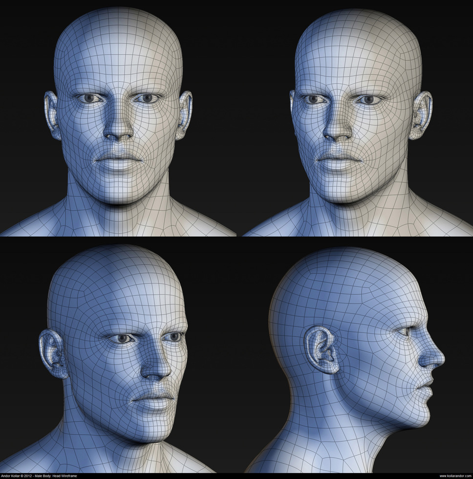 Male head wireframe high polygon mesh in Maya
