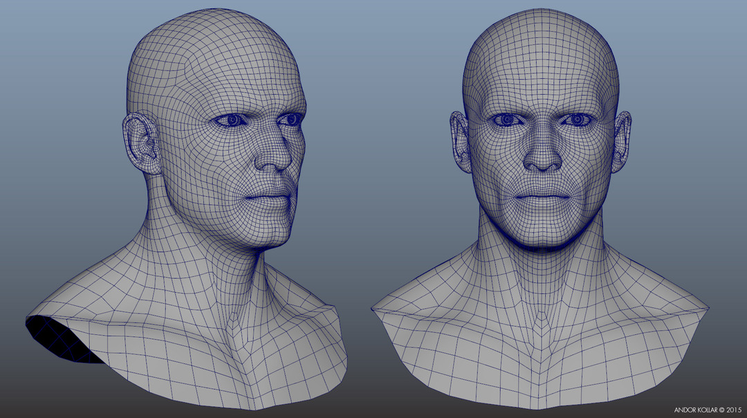 face_geometry_wireframe_1