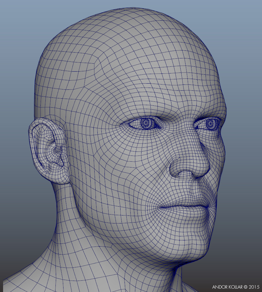 face_geometry_wireframe_2