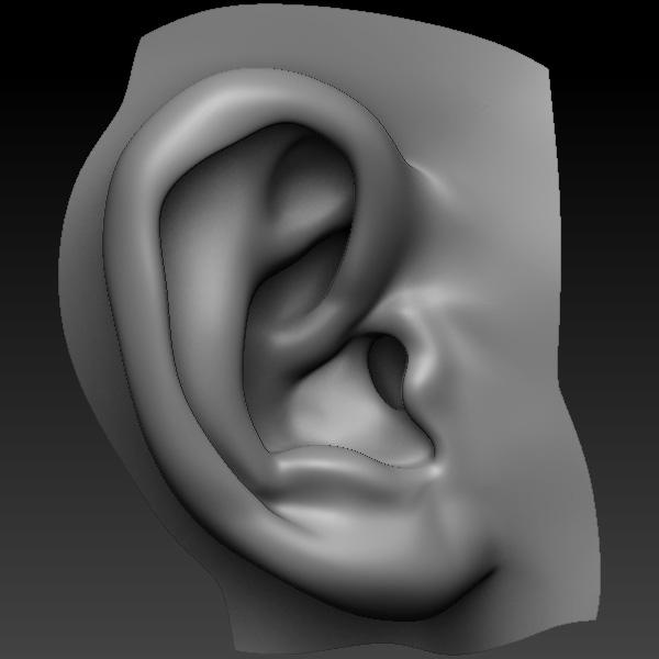 3d perfect ear